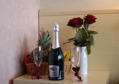 Loosi läheb romantiline nädalalõpp Tamulas!